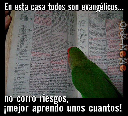 Loro Biblia