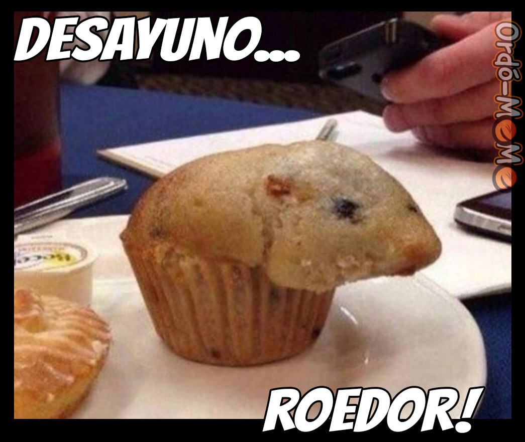 Meme desayuno roedor