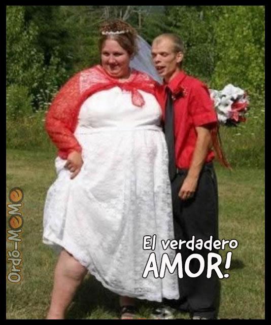 Meme el verdadero amor