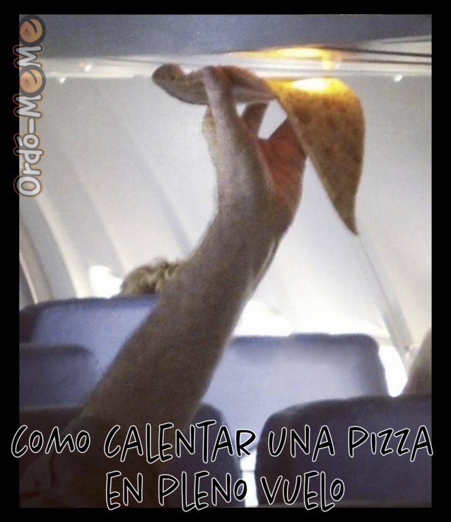 Meme como calentar una pizza