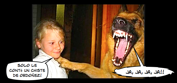 perro riendo a carcajadas