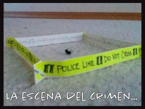 Meme escena del crimen