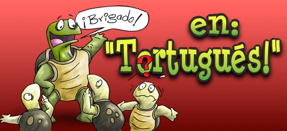 respuesta en tortugues