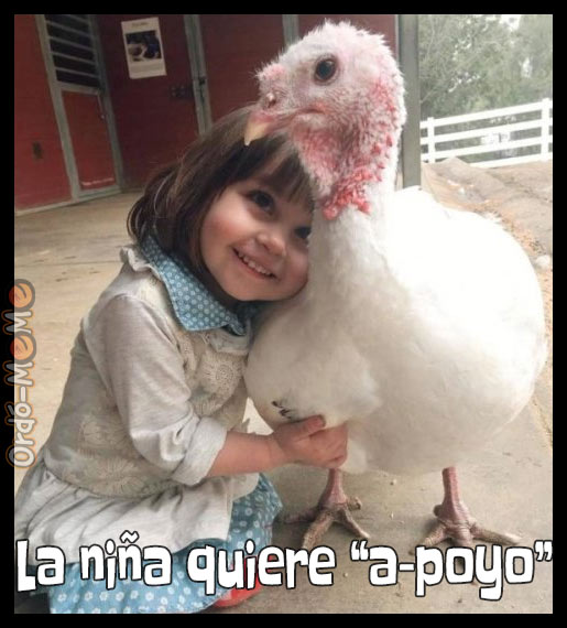 Meme de una niña abrazando a un pollo