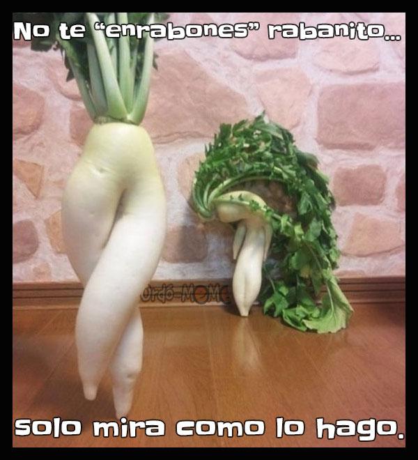 Meme de verduras bailando